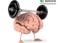 Как улучшить память и внимание