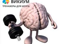 memory_train_new