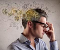 развитие интеллекта взрослых