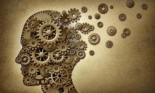 Человеческий мозг, его особенности и возможности - 8 советов, как помочь своему мозгу