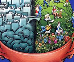 Человеческий мозг его особенности и возможности