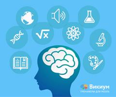 как мозг запоминает